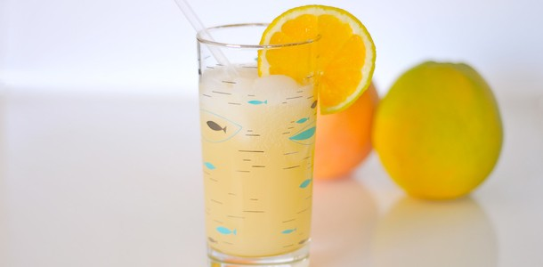 133-Grapefruit-Sirup-fructosearm-L